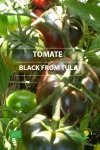 BLACK FROM TULA - BIO
