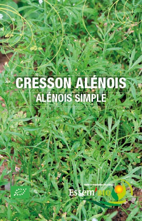 ALENOIS SIMPLE - BIO