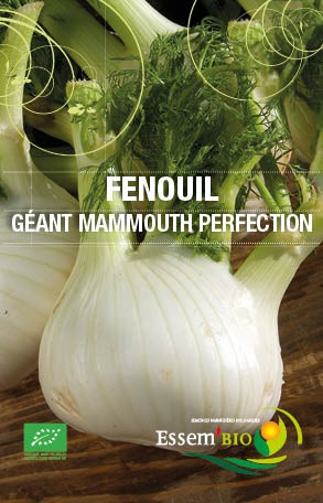 GEANT MAMMOUTH PERFECTION - BIO