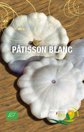 PATISSON BLANC - BIO